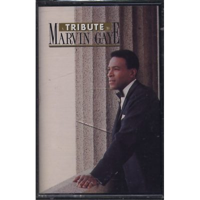 Marvin Gaye - Tribute