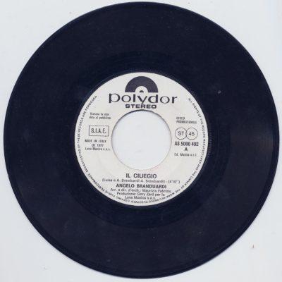 Angelo Branduardi - Il ciliegio (Promo)