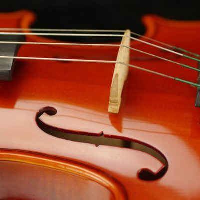 Borse di Studio: Seminari di musica antica Egida Sartori and Laura Alvini