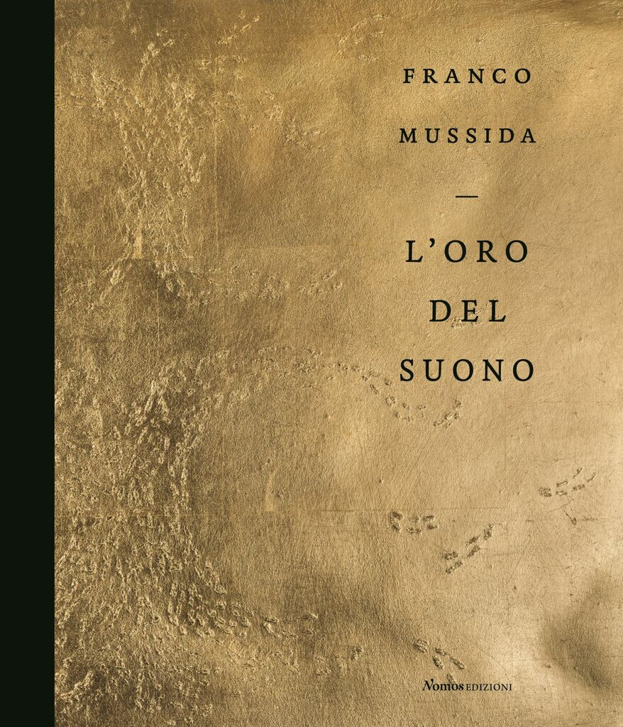 Franco Mussida. L'oro del suono